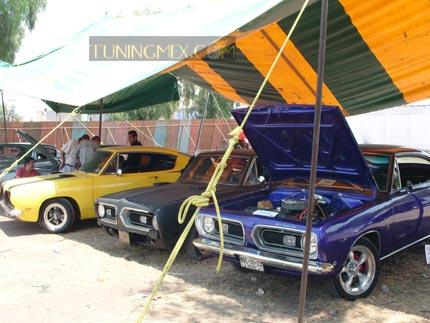 Club Barracuda   Tuningmex.