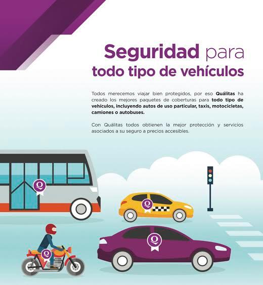 Impulsa qu litas la cultura del seguro en m xico for Oficina qualitas auto barcelona