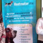 Ahora podrás comparar y comprar tu seguro de autos en línea, Rastreator México